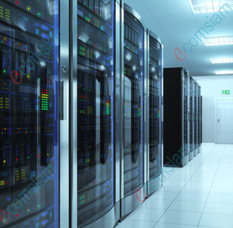 our web hosting server